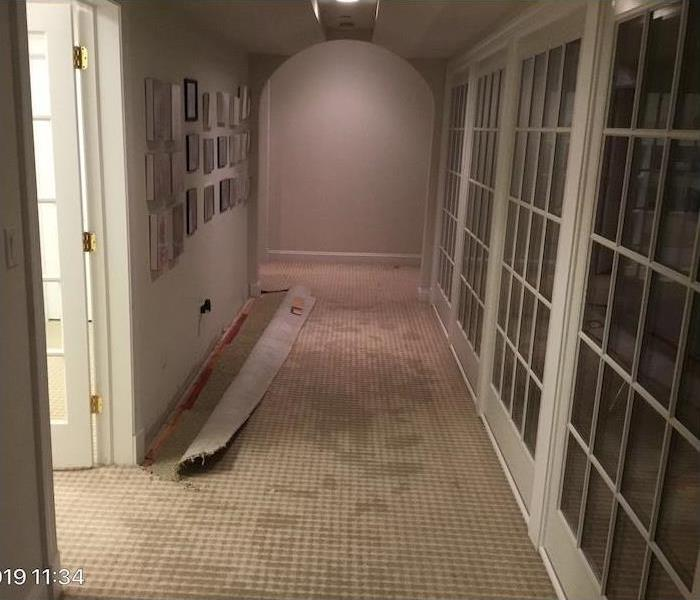 hallway with water damage to carpet and wall