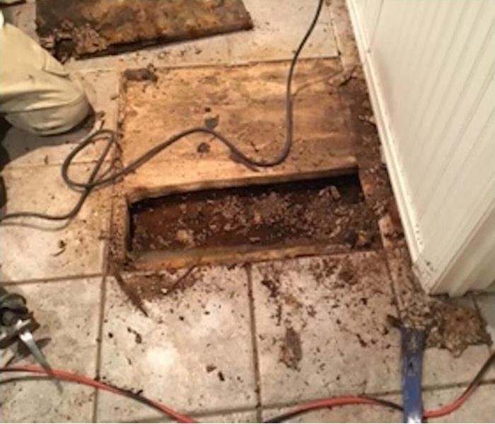 bathroom showing cutaway floor with sewage damage