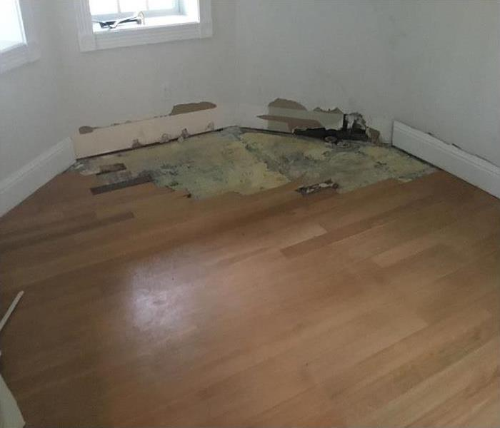 A sewage leak ran under the hardwood floors causing major damage.