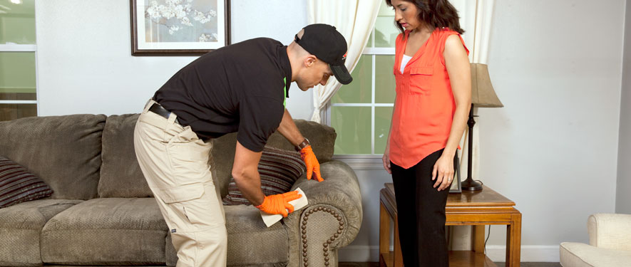 Mount Kisco, NY carpet upholstery cleaning